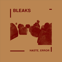 Bleaks: Haste, Error (2009) Wodger 02 LP