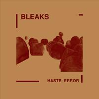 Bleaks: Haste, Error (2009) Wodger 02 LP