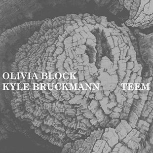 Olivia Block & Kyle Bruckmann: Teem (2010) either/OAR4